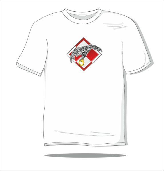 Koszulka z nadrukiem kolorowym Orzeł lotnictwa